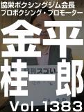 金平 桂一郎